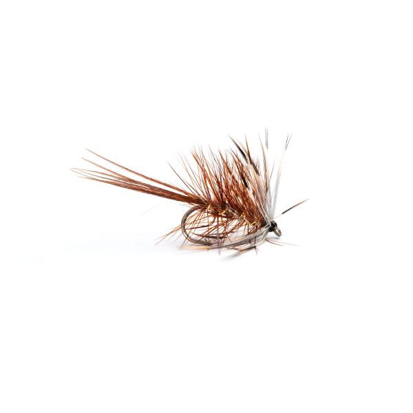 Mayfly French Partridge