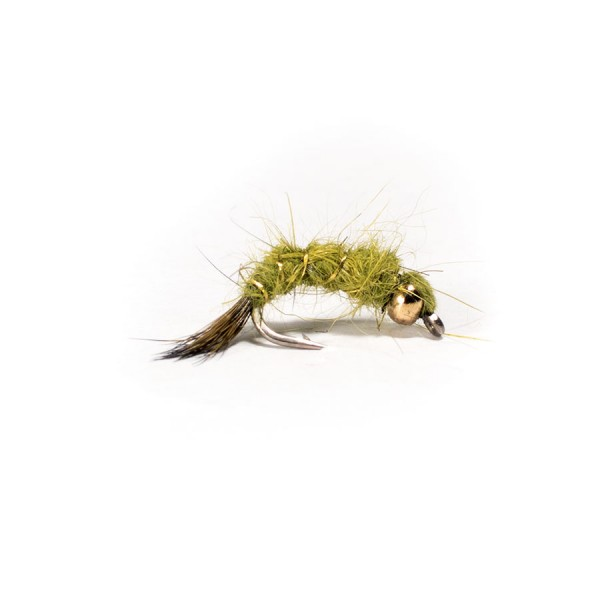 Hares Ear Olive(Curved)