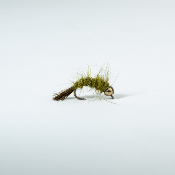 Hares Ear Olive Curved