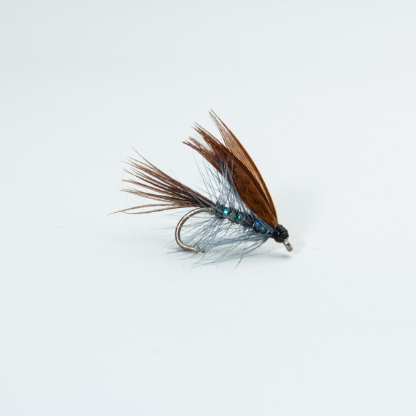 Dabbler Pearly