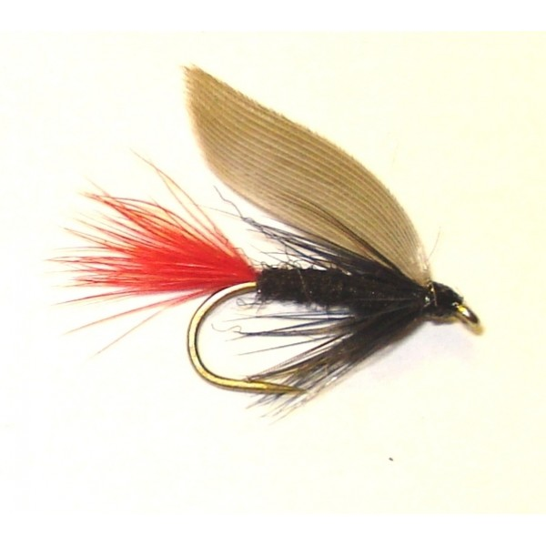 Blae And Black Red Tail