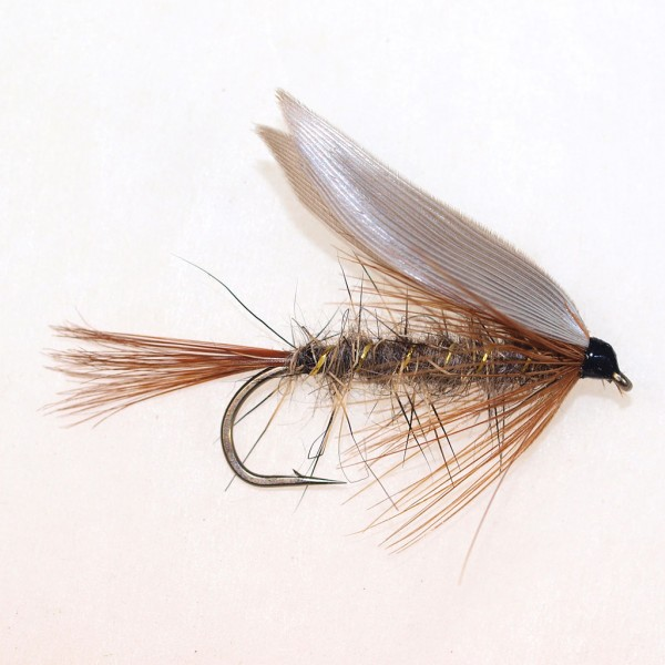 Gold Ribbed Hares Ear LS