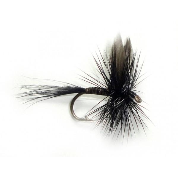 Black Quill