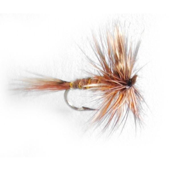March Brown Hackle