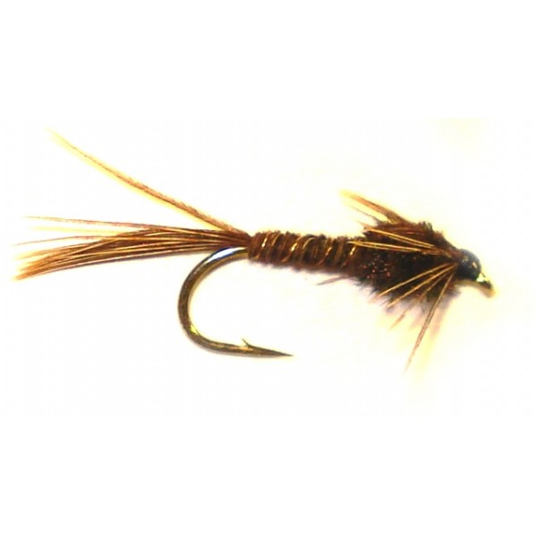 American Pheasant Tail