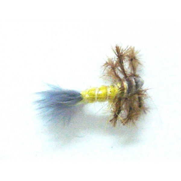 Legged Caddis