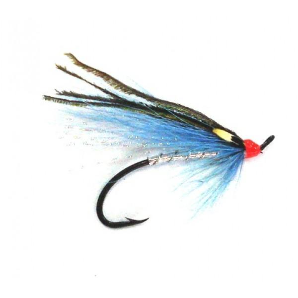 Flashy Blue Sea Trout