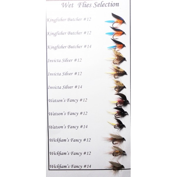 Wet Flies Selection